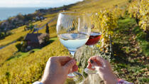Most Romantic Wine Tours